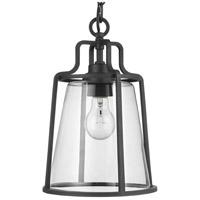 Progress P550065-031 Benton Harbor 1 Light 9 inch Black Outdoor Hanging Lantern with Durashield