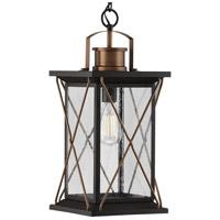 Progress P550068-020 Barlowe 1 Light 9 inch Antique Bronze Outdoor Hanging Lantern