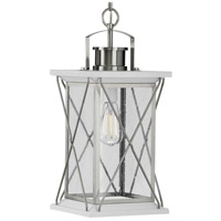 Progress P550068-135 Barlowe 1 Light 9 inch Stainless Steel Outdoor Hanging Lantern