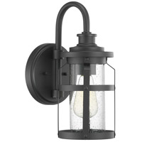Progress P560094-031 Haslett 1 Light 14 inch Black Outdoor Wall Lantern