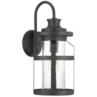 Progress P560096-031 Haslett 1 Light 22 inch Black Outdoor Wall Lantern