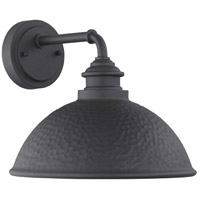 Englewood 1 Light 10 inch Black Outdoor Wall Lantern