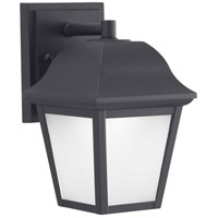 Die-Cast LED LED 9 inch Black Outdoor Wall Lantern