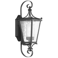 Progress P6626-31CD Cadence 1 Light 19 inch Black Outdoor Wall Lantern Small Design Series