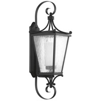 Progress P6628-31MD Cadence 1 Light 31 inch Textured Black Outdoor Wall Lantern, Large, Design Series photo thumbnail