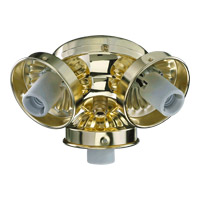 Quorum International Signature 3 Light Fan Light Kit in Polished Brass 2303-902