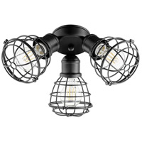 Quorum 2314-69 Fort Worth LED Noir Patio Fan Light Kit