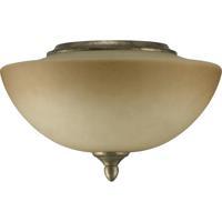 Quorum International Salon 2 Light Fan Light Kit in Mystic Silver 2386-9158
