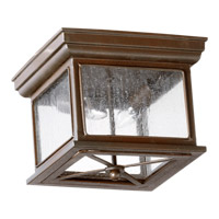 Quorum International Magnolia 2 Light Outdoor Ceiling Light in Oiled Bronze 3043-11-86
