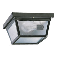 Signature 2 Light 9 inch Gloss Black Outdoor Ceiling Light