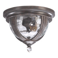 Sloane 2 Light 11 inch Baltic Granite Outdoor Ceiling Light