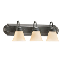 Quorum International Signature 3 Light Vanity Light in Toasted Sienna 5094-3-344