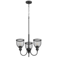 Quorum 6212-3-69 Omni 3 Light 19 inch Noir Chandelier Ceiling Light, Convertible