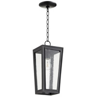 Quorum 716-6-69 Bravo 1 Light 7 inch Noir Outdoor Pendant