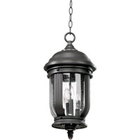 Quorum International Summit 4 Light Outdoor Hanging Lantern in Old World 7183-4-95