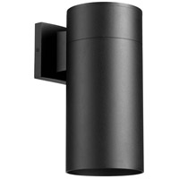 Cylinder 1 Light 12 inch Noir Outdoor Wall Lantern