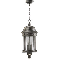 Quorum International Presidio 3 Light Outdoor Hanging Lantern in Silver Noir 7227-3-91