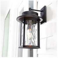 Quorum 7246-11-69 Charter 19 inch Noir Outdoor Wall Lantern, Clear Hammered alternative photo thumbnail