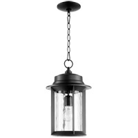 Quorum 7247-9-69 Charter 10 inch Noir Outdoor Pendant, Clear Hammered