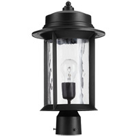 Charter 17 inch Noir Post Lantern, Clear Hammered