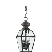 Duvall 2 Light 7 inch Bronze Outdoor Hanging Lantern in Clear