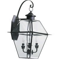 Quorum International Duvall 4 Light Outdoor Wall Lantern in Bronze 729-4-36
