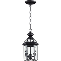 Quorum International Wellsley 2 Light Outdoor Hanging Lantern in Gloss Black 735-2-15