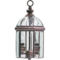 Quorum International Wellsley 2 Light Outdoor Hanging Lantern in Cobblestone 735-2-33