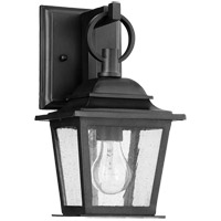 Pavilion 1 Light 13 inch Noir Outdoor Wall Lantern