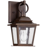 Pavilion 13 inch Oiled Bronze Outdoor Wall Lantern