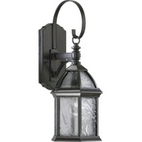 Quorum 7817-1-25 Weston 1 Light 20 inch Timberland Granite Outdoor Wall Lantern