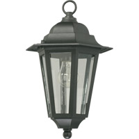 Quorum International Signature 1 Light Outdoor Hanging Lantern in Black 791-15