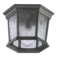 Quorum International Signature 1 Light Outdoor Ceiling Light in Timberland Granite 7930-1-25