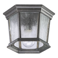 Quorum International Signature 1 Light Outdoor Ceiling Light in Baltic Granite 7930-1-45