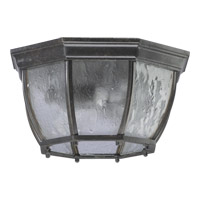 Signature 2 Light 13 inch Baltic Granite Outdoor Ceiling Light
