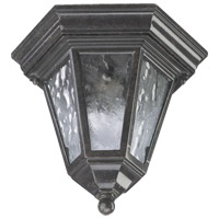 Quorum International Signature 1 Light Outdoor Ceiling Light in Baltic Granite 7933-1-45