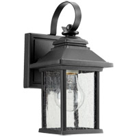 Pearson 10 inch Noir Outdoor Wall Lantern, Clear Seeded