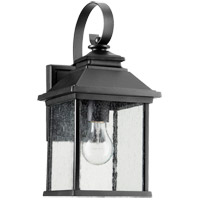 Pearson 14 inch Noir Outdoor Wall Lantern, Clear Seeded