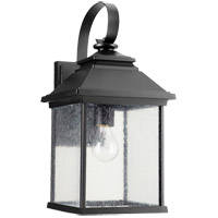 Pearson 18 inch Noir Outdoor Wall Lantern, Clear Seeded