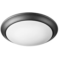 Quorum 905-10-69 Energy Saving 1 Light 10 inch Noir Ceiling Mount Ceiling Light