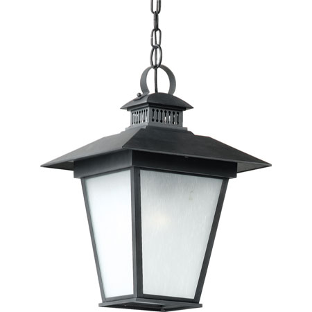 Quoizel Lighting Dover 1 Light Outdoor Hanging Lantern in Royal Ebony DV1913BA photo