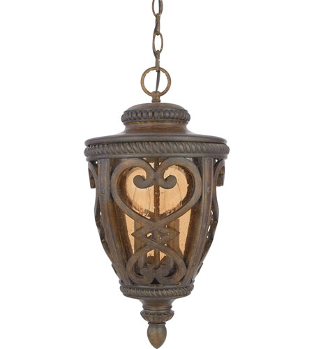 Quoizel Lighting Fort Quinn 2 Light Outdoor Hanging Lantern in Antique Brown FQ1910AW01 photo