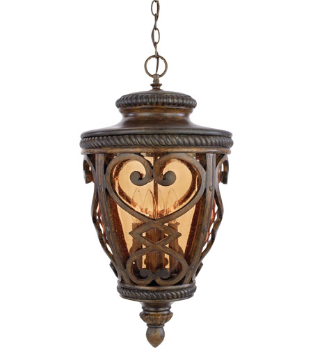 Quoizel Lighting Fort Quinn 4 Light Outdoor Hanging Lantern in Antique Brown FQ1914AW01 photo