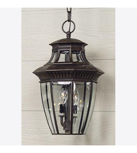 quoizel lighting georgetown 3 light outdoor hanging lantern in