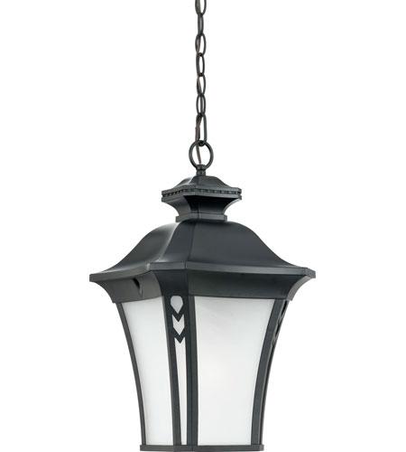 Quoizel Lighting Norfolk 1 Light Outdoor Hanging Lantern in Mystic Black NF1912K photo