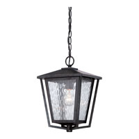 Quoizel Alfresco 1 Light Outdoor Hanging Lantern in Imperial Bronze ALF1910IB