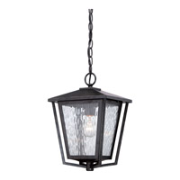 Quoizel Alfresco 1 Light Outdoor Hanging Lantern in Imperial Bronze ALF1910IBFL
