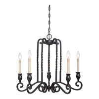 Atrium 5 Light 27 inch Mystic Black Chandelier Ceiling Light