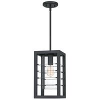 Quoizel BIM1908EK Bimini 1 Light 8 inch Earth Black Outdoor Hanging Lantern