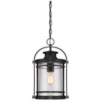 Booker 1 Light 11 inch Mystic Black Hanging Lantern Ceiling Light in A21 Medium Base, Aluminum-Steel